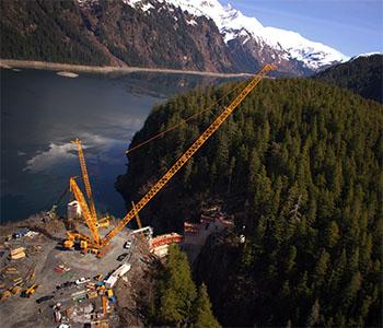 Alaska Crane